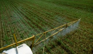 Chemical application, sprayer boom arm during application to a no-till soybean field in wheat stubble