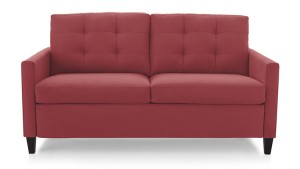 Crate and Barrel Karnes Sofa Sleeper