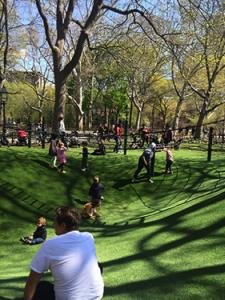 Urban Park 2